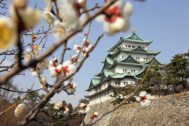 The four seasons of Nagoya Castle